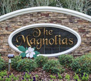 The Magnolias Neighborhood